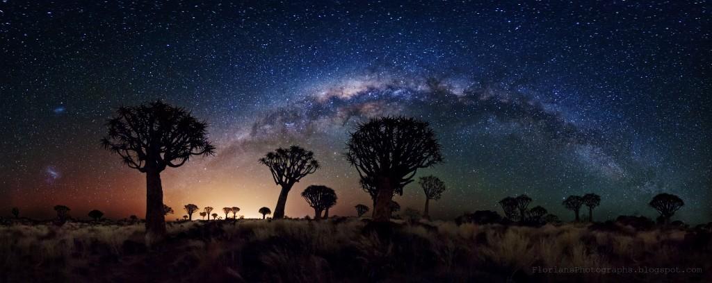Млечный Путь над лесом колчанных деревьев (Намибия)